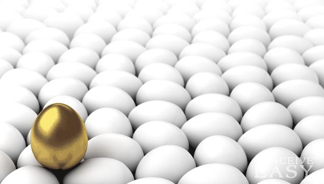 Ways to Improve Egg Quality