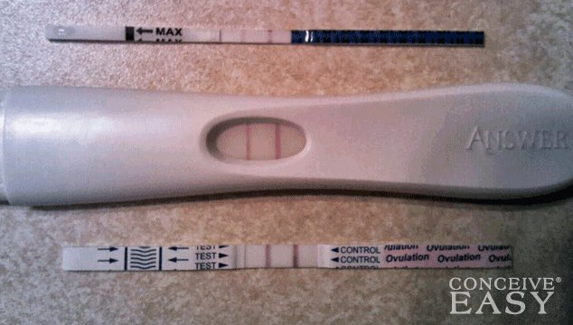 Ovulation Predictor Kits vs. Ovulation Test Strips