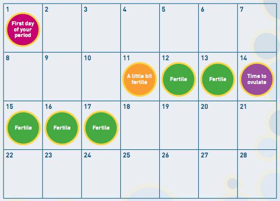 calendar method to get pregnant