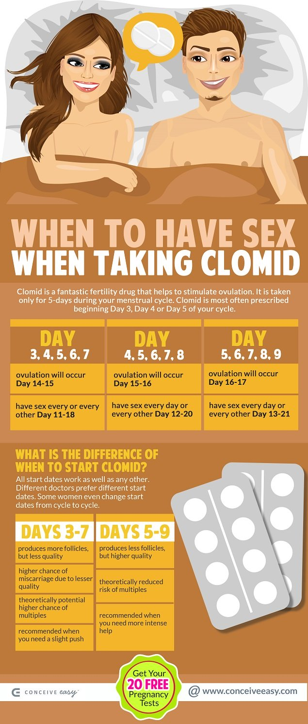 When to Have Sex When Taking Clomid Infographic