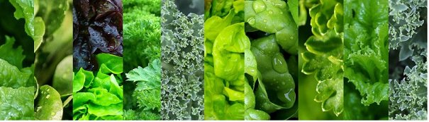 green leafy vegetables for fertility