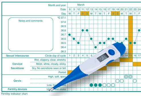 BBT thermometer and charting