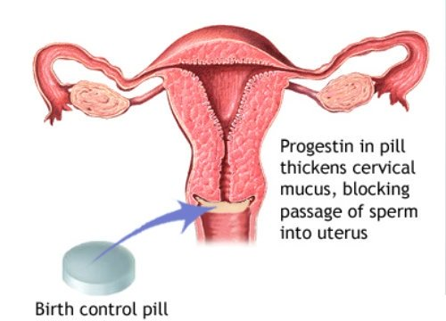 how birth control pills work