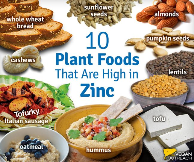 zinc enriched foods