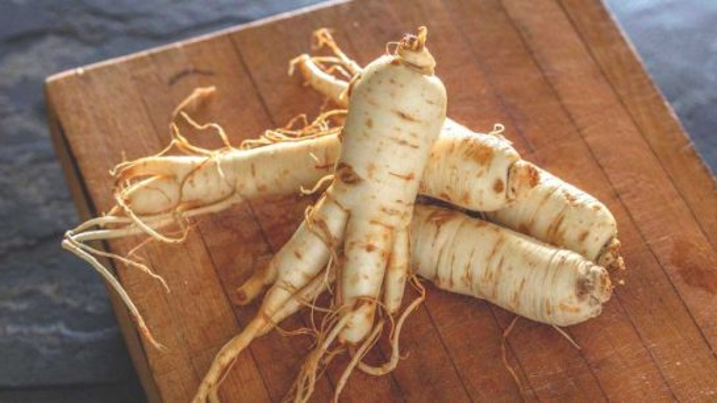 ginseng - herbs improve male fertility