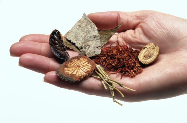 Women with PCOS use fertility boosting herbs